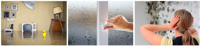 Осушитель воздуха - доступный и простой способ нормализовать влажность в квартире