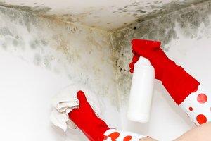 Как избавиться от повышенной влажности и сырости в квартире
