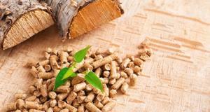 Производство пеллет из древесного сырья